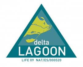 Lifedeltalagoon