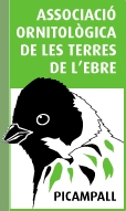 Associació Ornitològica de les Terres de L´Ebre-Picampall
