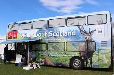 Bus Wild about Scotland. El único sitio dónde podía tener wifi ;)