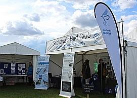 Scotland Bird Club