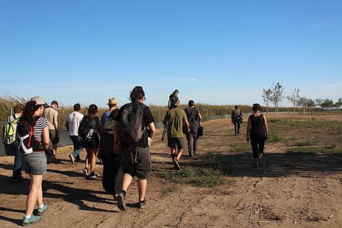 Grupo muy majete de ornitólogos afinicionados birdwatcheando por la zona de Lo Goleró en l'Ampolla.