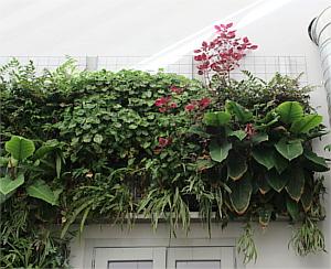 El edificio tiene un espacio central dónde la humedad y la aireación está controlada de forma automática. Los jardines verticales que tienen son una maravilla :)